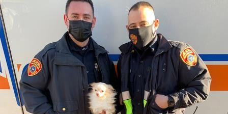 纽约警察从着火的房子里救出狗,猫,逃跑的孩子告诉他们宠物在里面