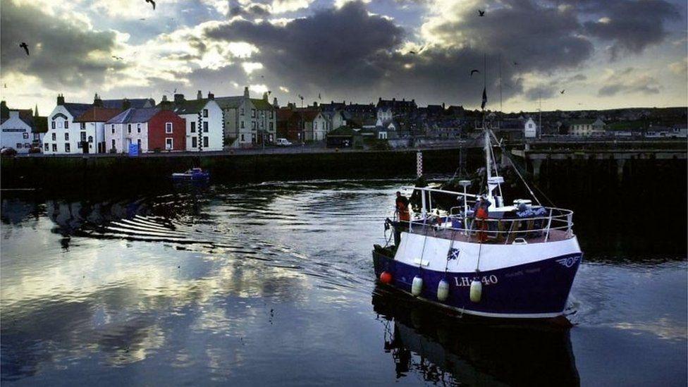 英国脱欧:欧盟贝类禁令站不住脚