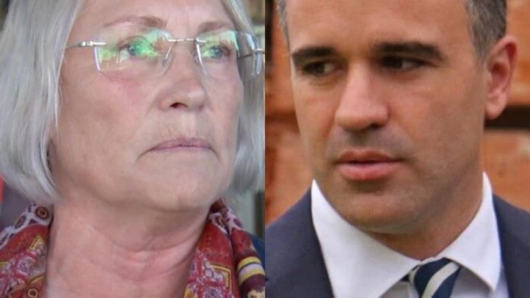 前南非工党议员安娜贝尔·迪格斯被指控敲诈反对派领袖彼得·马里诺斯卡斯
