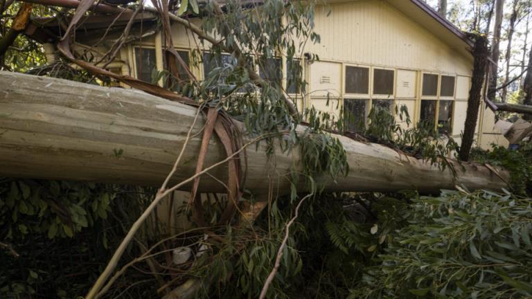 国防部队成员前往风暴袭击的维多利亚